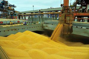 Exportações do agronegócio crescem 23,7% em setembro