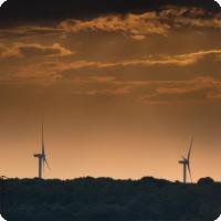 Evolui o mercado de compensação ambiental no Brasil