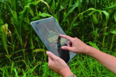 Artigo: Agricultura, uma atividade em constante movimento