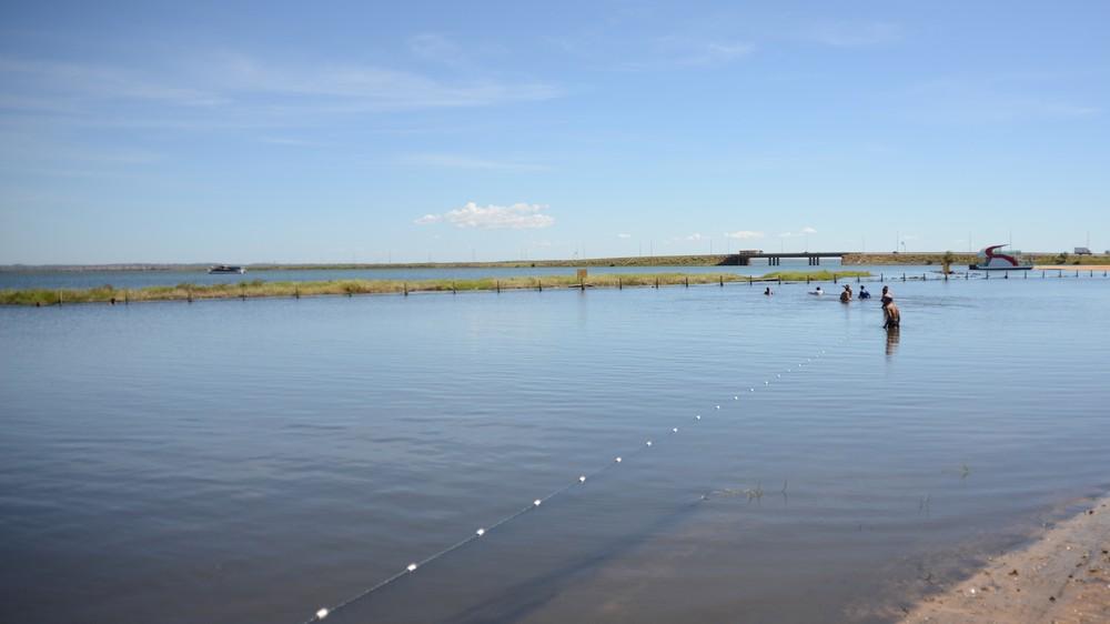Arraias são encontradas em área de banho na praia da Graciosa durante vistoria